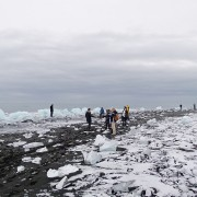 Eisberge (am Strand) 2